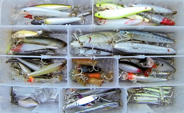 A Beginners Guide to Successful Lure Fishing in the Seaway